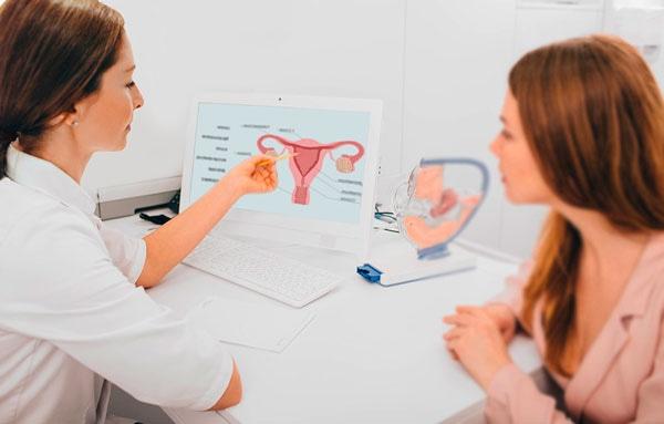 что проверяет гинеколог-эндокринолог